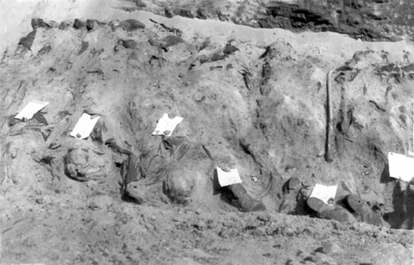 tweede wereld oorlog veraders dood geschoten